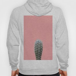 Cactus on pink background Hoody