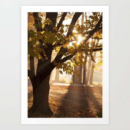 Through the Golden Mists  Art Print