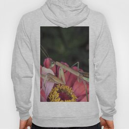 Praying mantis on Flower Hoody