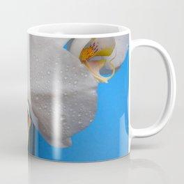 White Moth Orchid Coffee Mug