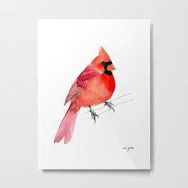 Northern Cardinal Watercolor and Ink Metal Print