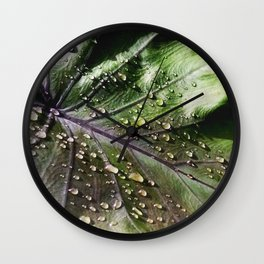 Sunlight After Rain -The Garden Series Wall Clock