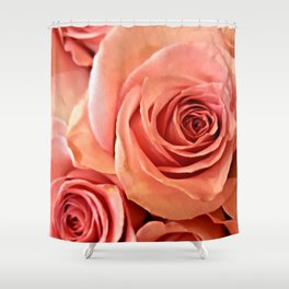 Peach Roses 4 Shower Curtain