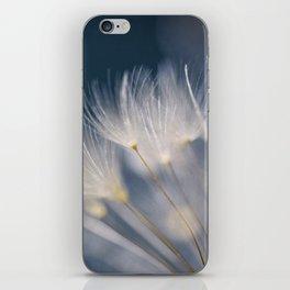 soft lights iPhone Skin