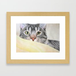 Brown Tiger Framed Art Print