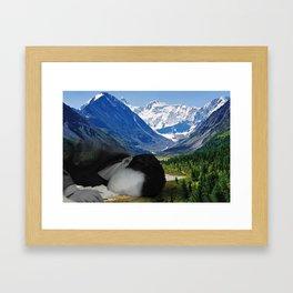 the desease Framed Art Print