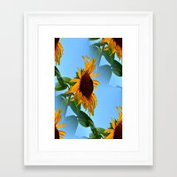 sunflowers Framed Art Prints featuring Sunflowers by Sartoris ART