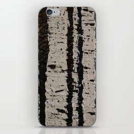 Stark iPhone Skin