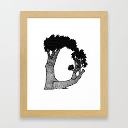 "Native Texas Plants ""D"" Framed Art Print"