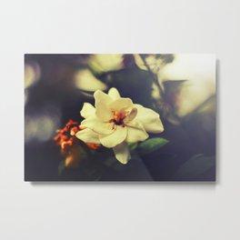 flower in the morning Metal Print