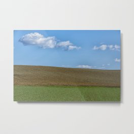 BETWEEN EARTH AND SKY Metal Print