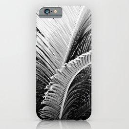 Palms monochrome II iPhone Case