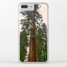 Sequoias in April Clear iPhone Case