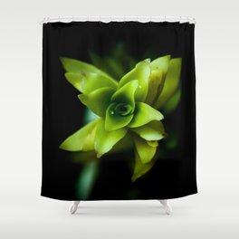 Aptenia succulent plant Shower Curtain