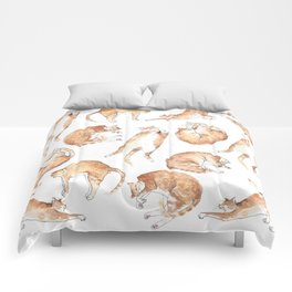 Catastrophic Comforters