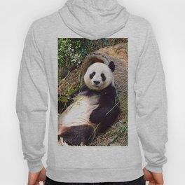 Panda 0315P Hoody