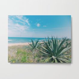 Flagler Beach, Florida Metal Print