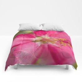 Little Pink Flower Comforters