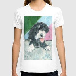 Sammy the Parti-poodle Pup T-shirt