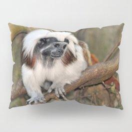 Cotton-top Tamarin Pillow Sham