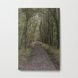 The Old Railway Line Metal Print