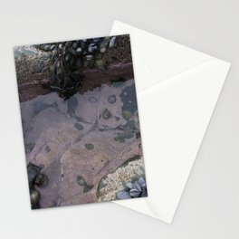 Pink Ocean Rock Pool with Mussels Stationery Cards