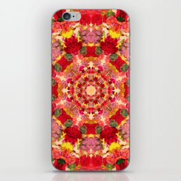 Vintage Flowers In The Round iPhone Skin