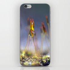 Capillary thread moss 745 iPhone & iPod Skin