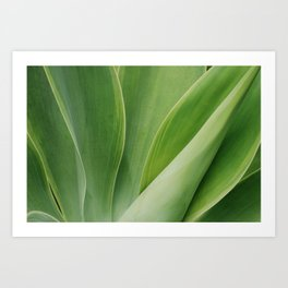 Maui Green Art Print