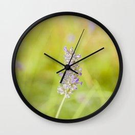 Lavender flower Wall Clock