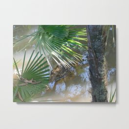 Creeping Crocodile Metal Print