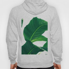 Green Leafs (Color) Hoody