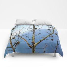 Red Finn - Tree Fairies - Jeronimo Rubio Photography 2016 Comforters