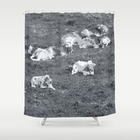 cows Shower Curtains featuring Cows by Mr and Mrs Quirynen