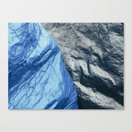 Seriously II Canvas Print