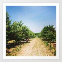 farm Art Prints featuring Farm by Saba Hazaveh