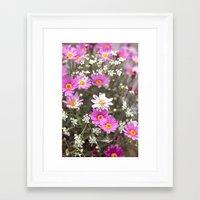 daisy Framed Art Prints featuring Daisy by LebensART Photography