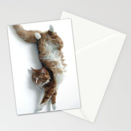 Max Stationery Cards