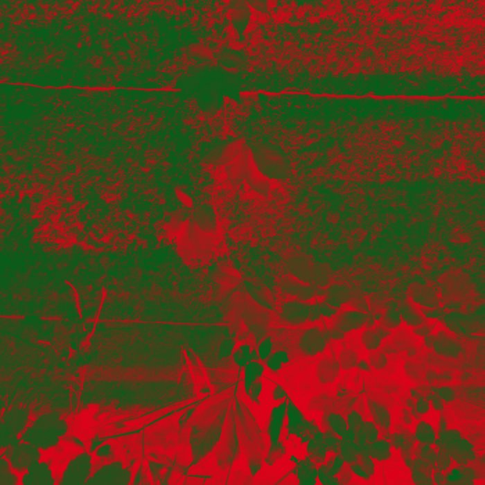 Leaves in fire red green fantasy Comforters