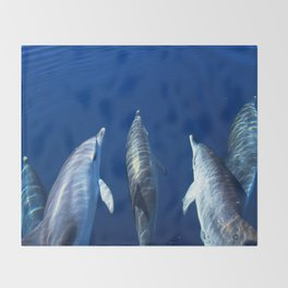 Playful and friendly dolphins Throw Blanket