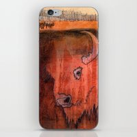 bison iPhone & iPod Skins featuring Bison by Pat Butler
