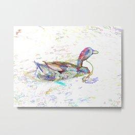 Ducks swim in a pond 3 Metal Print