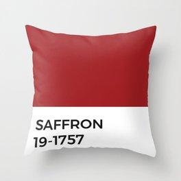 Saffron Red Spice Pantone Chip Throw Pillow