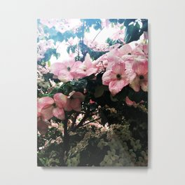 Dogwood Rainful Metal Print