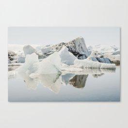 Icebergs XII Canvas Print
