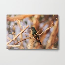 Bird - Photography Paper Effect 004 Metal Print