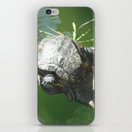 Turtle Love iPhone Skin