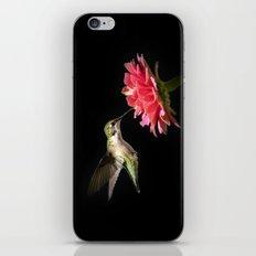 Hummingbird V iPhone Skin
