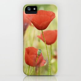 Dream poppies. Wonderful red spring iPhone Case