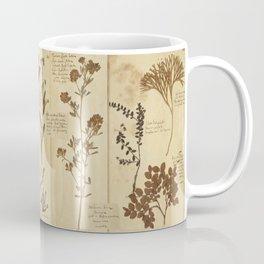 Dried plants - Vintage Herbarium Coffee Mug